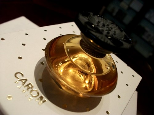 Narcisse Noir Perfume Extract
